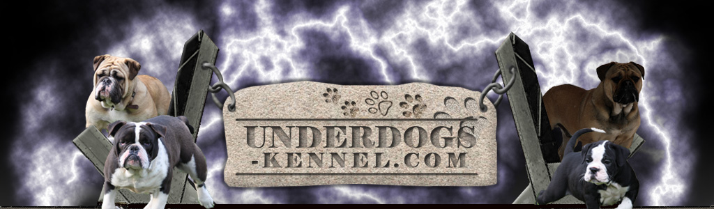Underdogs-Kennel-header